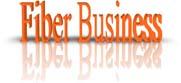Fiber Business (45 Mbps)